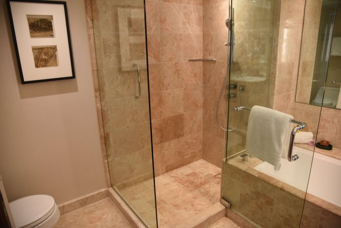 Toilet, shower and bathtub